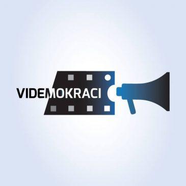 Videmokraci